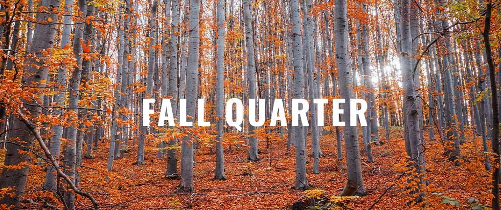 fall quarter 2020