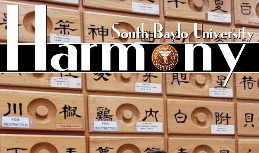 SBU Newsletter Fall 2020